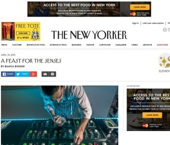 THE NEW YORKER – A Feast For The Senses