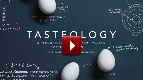 Video – AEG Tasteology Documentary Episode 4 – Experience